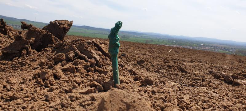 Záchrana vinohradov v Stredoslovenskej vinohradníckej oblasti