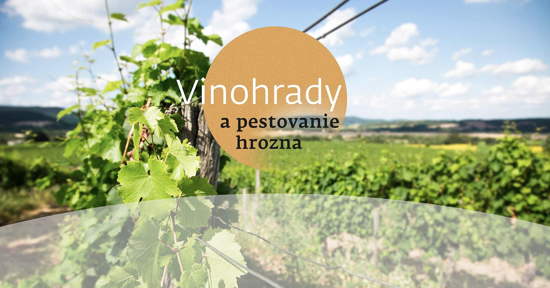 movino_vinohrady