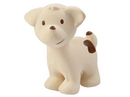 96555 puppy