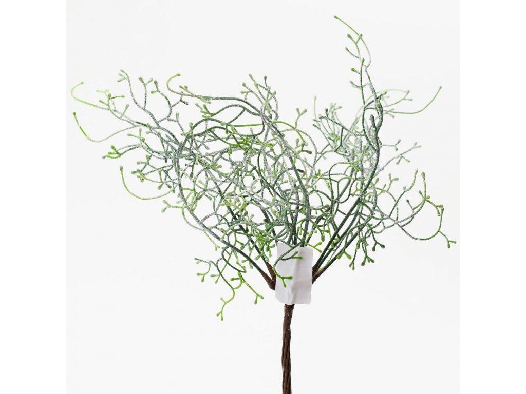 Zelená vetvička/zväzok 30cm