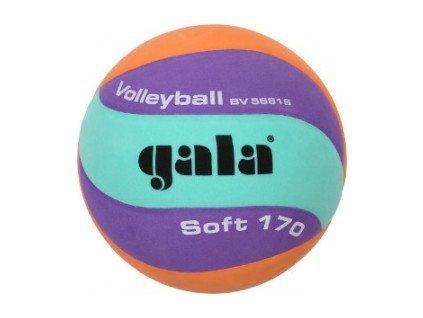 Volejbalový míč Gala Volleyball 170g 10 panelů