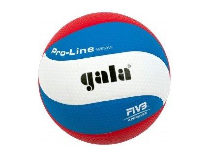 Volejbalový míč Gala Pro-line 10 panelu 5591 S