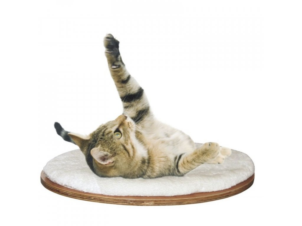 Nástěnné odpočívadlo pro kočky, bílé, oválné, 35 x 50 cm