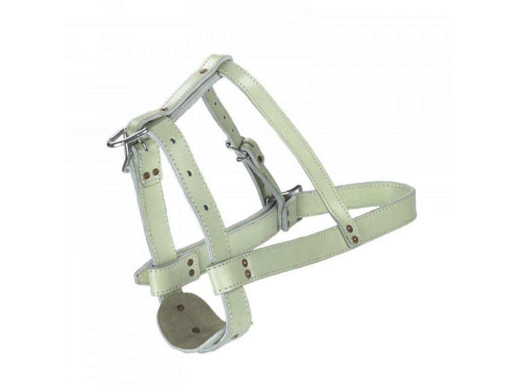 Ohlávka pro býky kožená chromovaná, 38 mm
