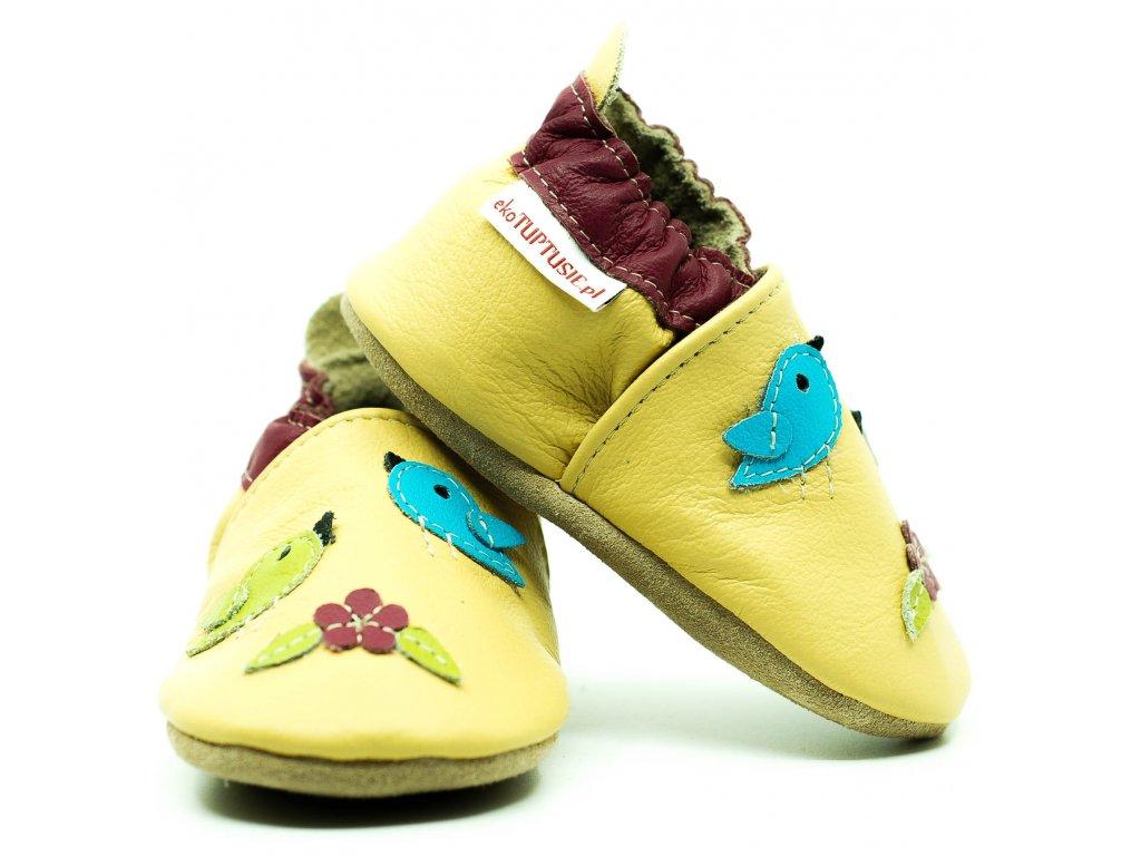 capacky letajici ptacci2