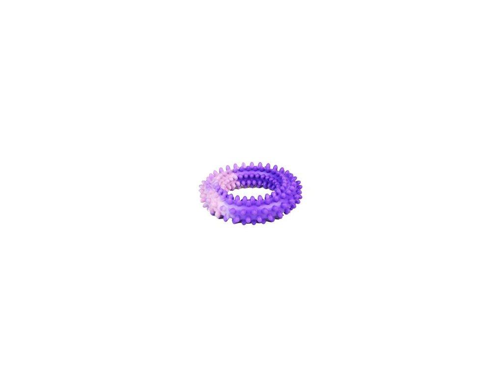 Hračka pes Kruh s bodlinami plovací 10cm SP
