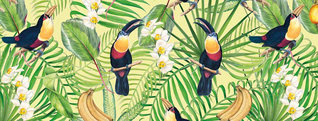 Tukani dárkový a dekorační papír