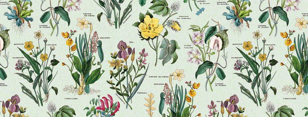 Flóra dárkový a dekorační papír