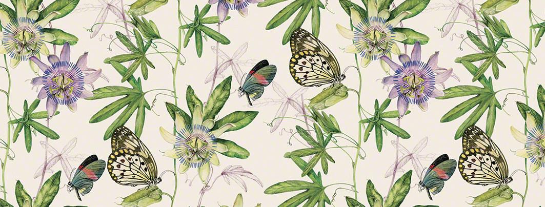 Motýli a květiny