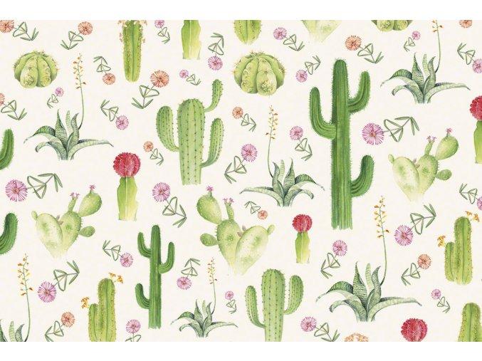 1525 Cactus T