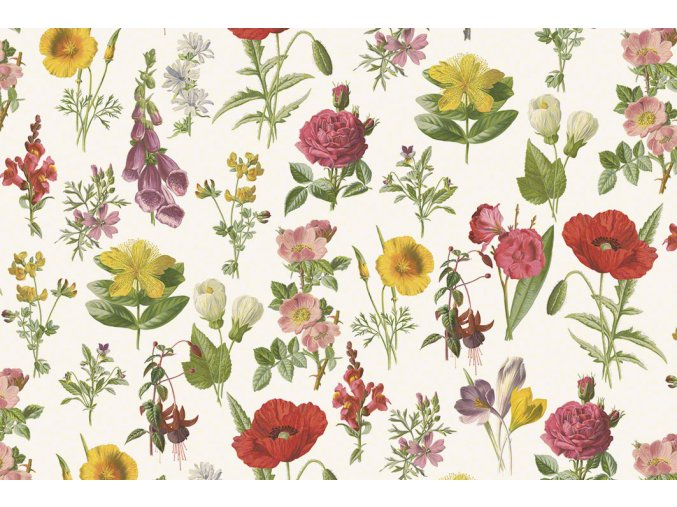 1534 Watercolor flowers T