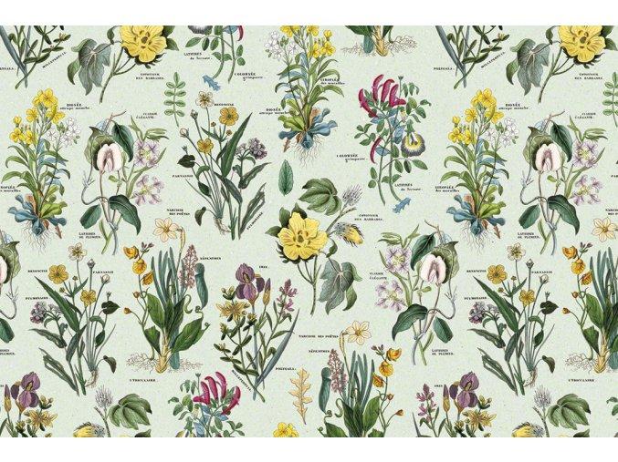 1548 Flora T