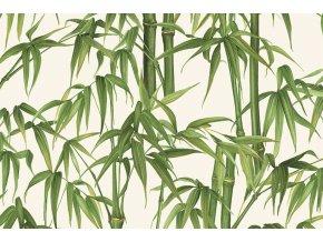 303 Bambu' T
