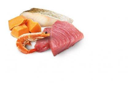 77628 n d cat ocean adult tuna cod shrimp pumpkin 80g 80g zdarma