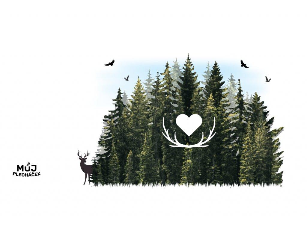 Miluju les V2