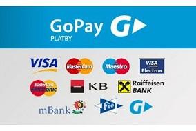 Go pay