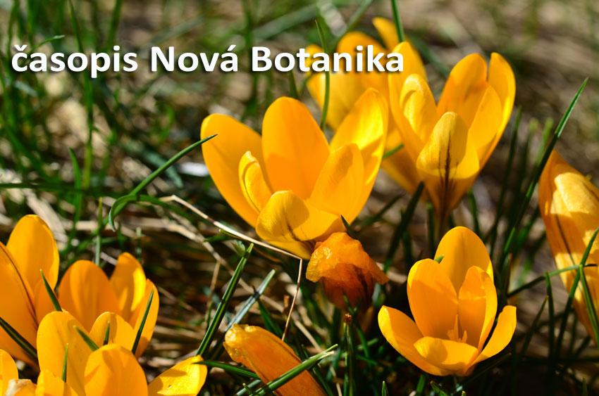 Fungování časopisu Nová Botanika v nouzovém stavu