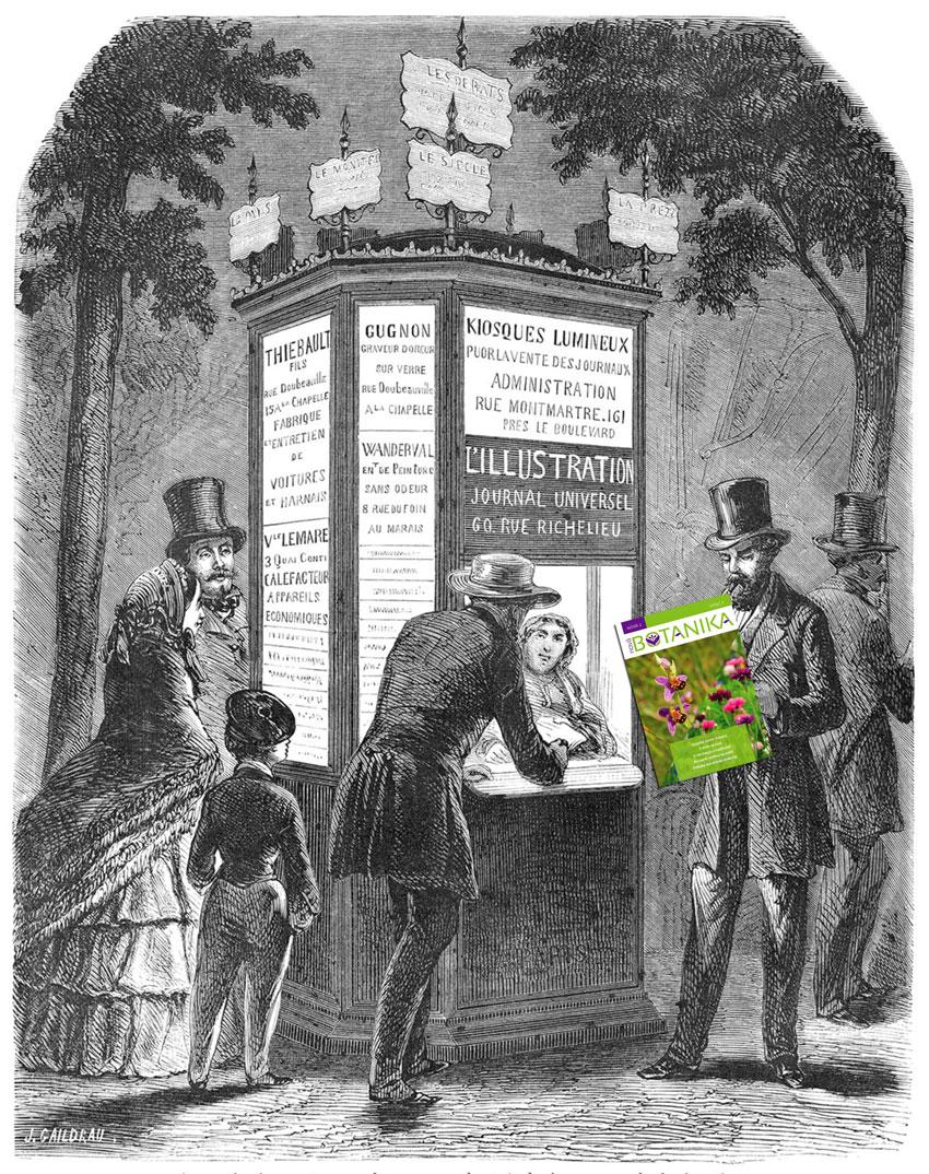 Časopis Nová Botanika na stáncích