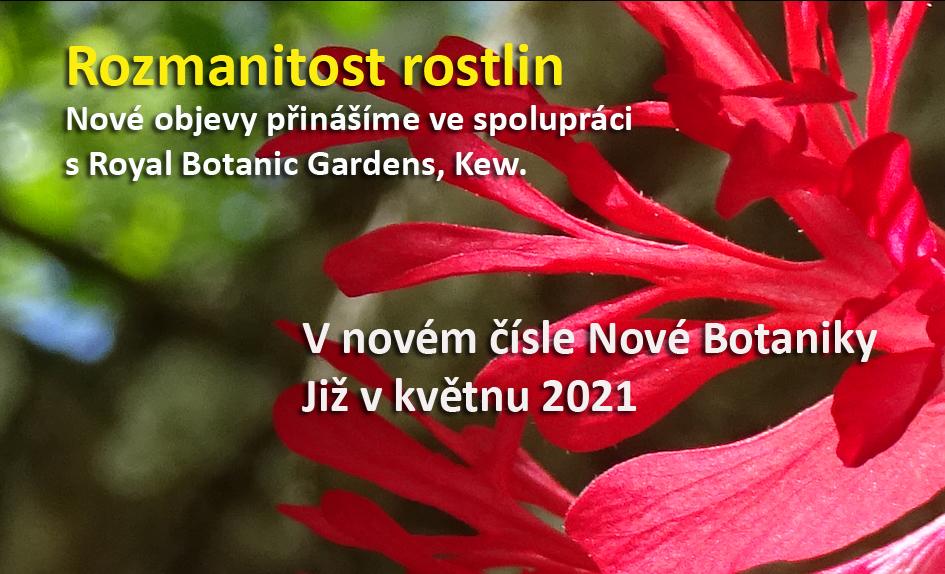 Na co se můžete těšit v novém jarním čísle Nové Botaniky
