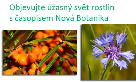 Poznávejte s námi úžasný svět rostlin
