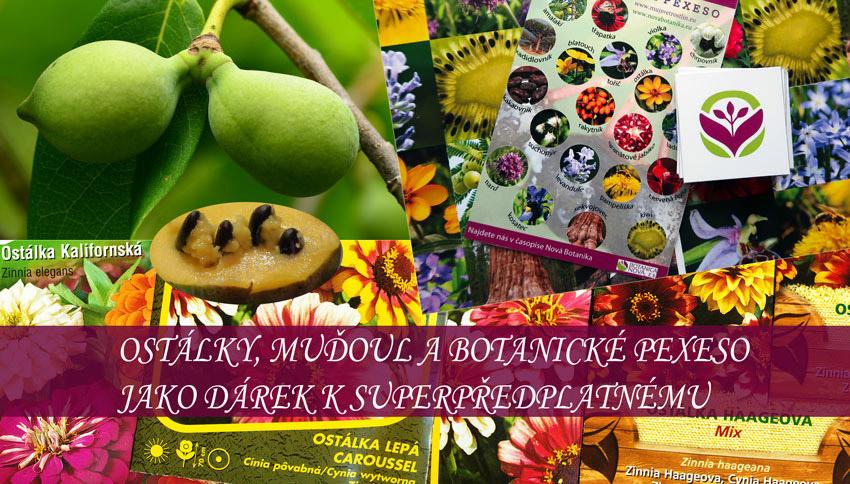 Nejvýhodnější předplatné s dárky - můžete se těšit na ostálky, indiánský banán, botanické pexeso a kalendářík.