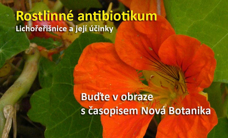 Rostlinné antibiotikum