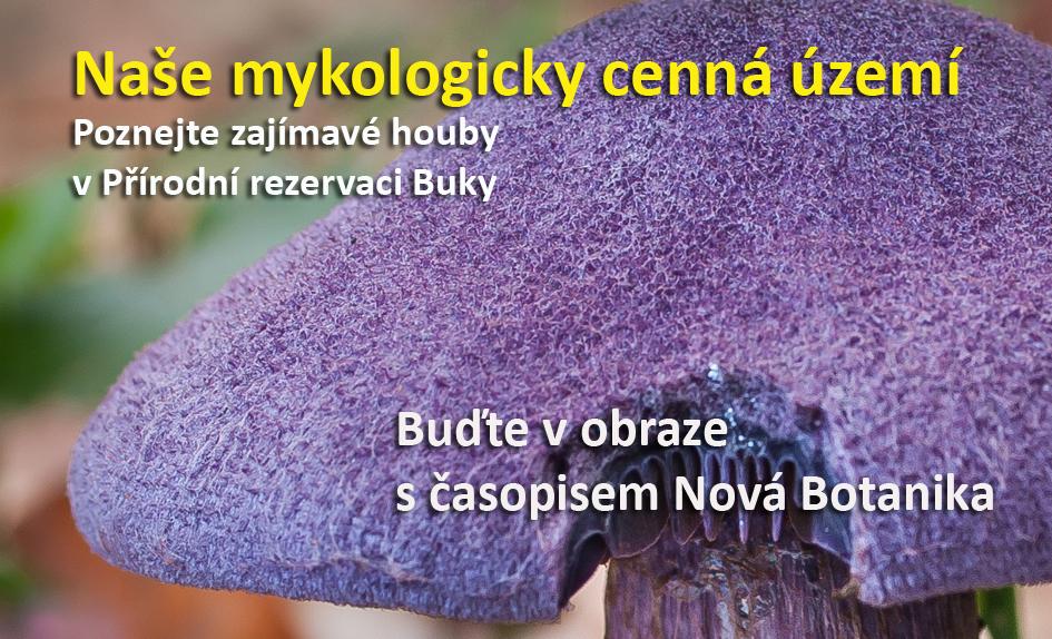 Mykologicky cenná území
