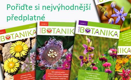 Nejvýhodnější předplatné Nové Botaniky