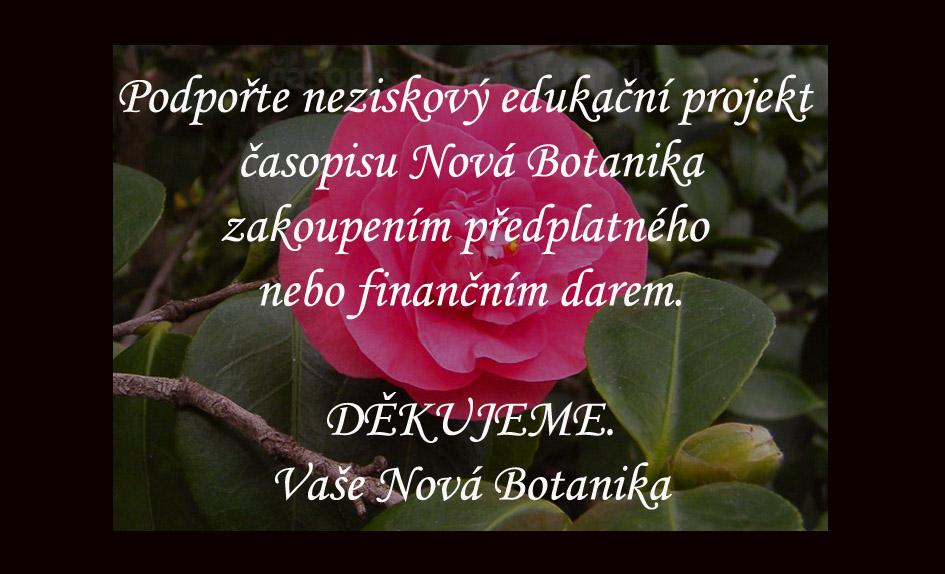 Podpořte neziskový projekt časopisu Nová Botanika