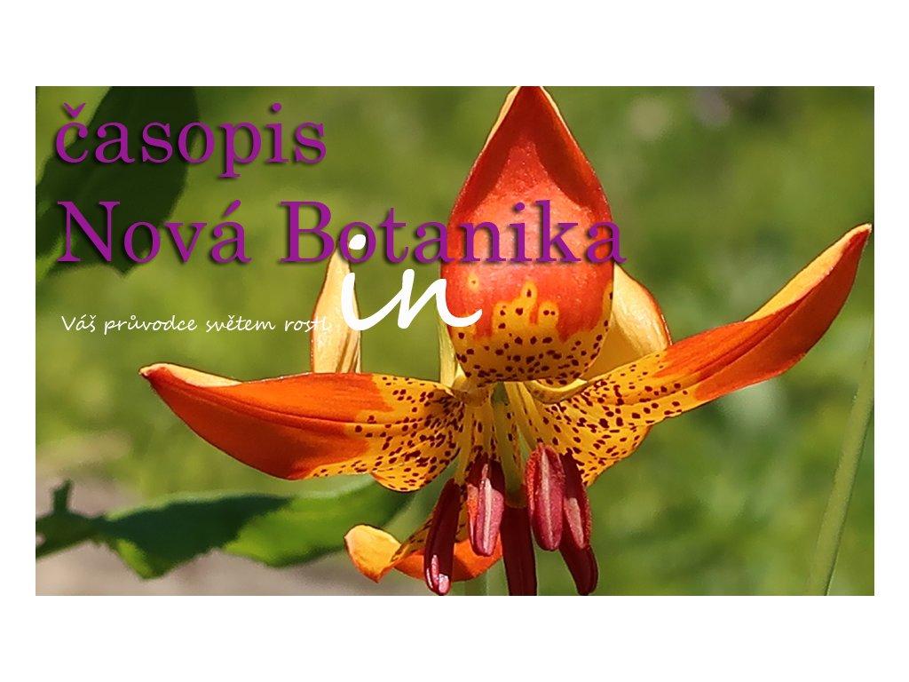 Titulka NB2019 1 minimini