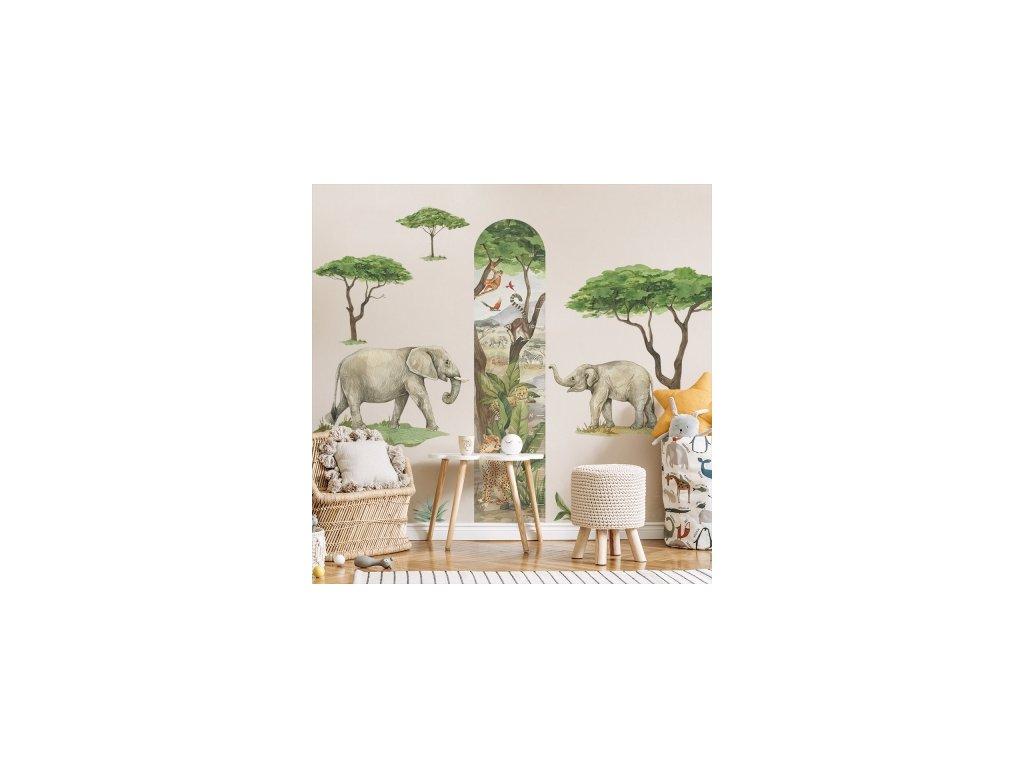 Safari- Sloni DK428