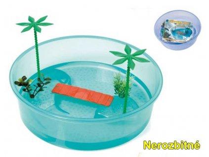 215336 1 terarium plast tortuga isle