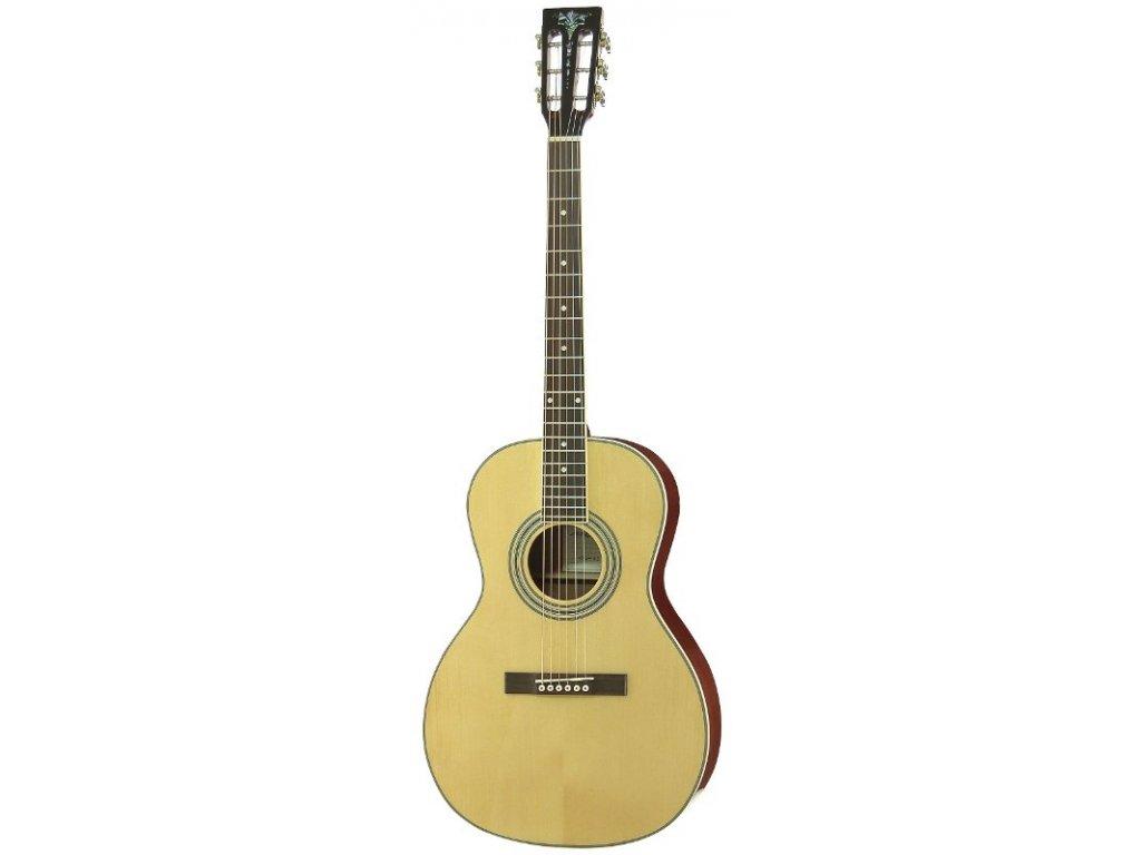 AP-STD II - akustická kytara