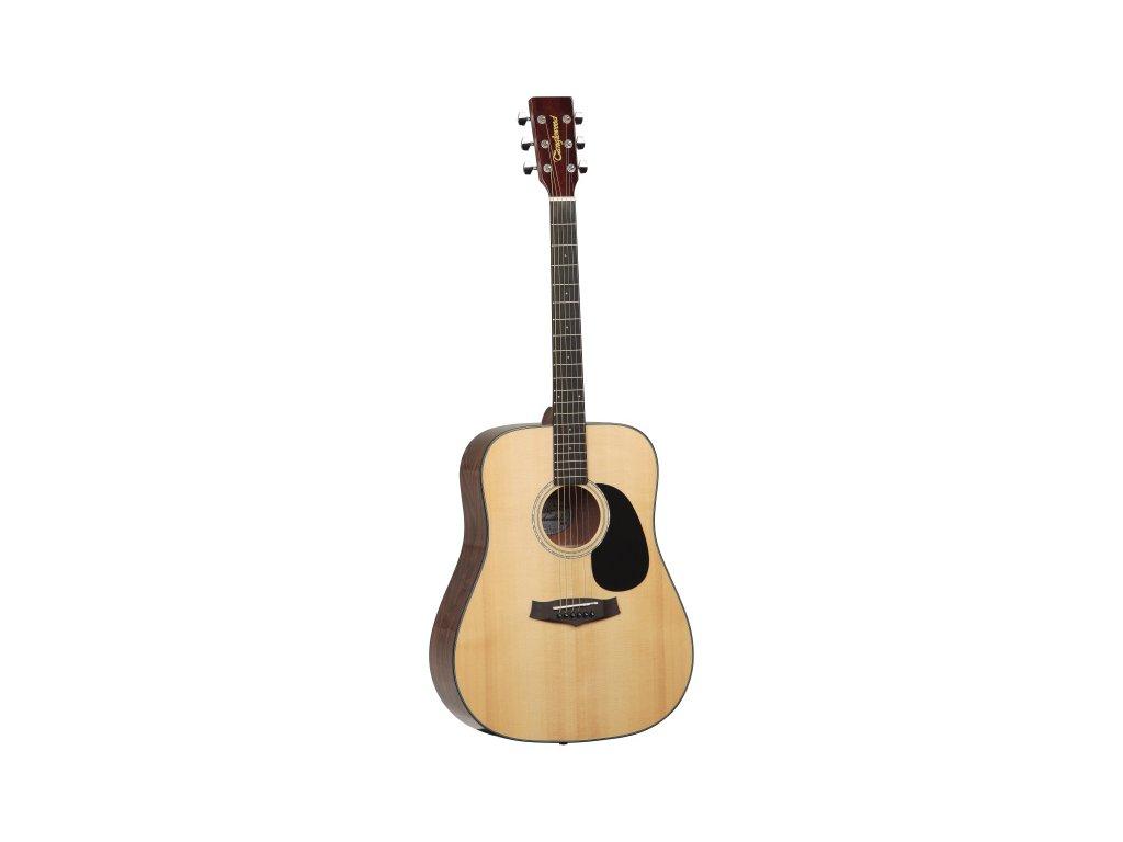 TD8 ST - akustická kytara