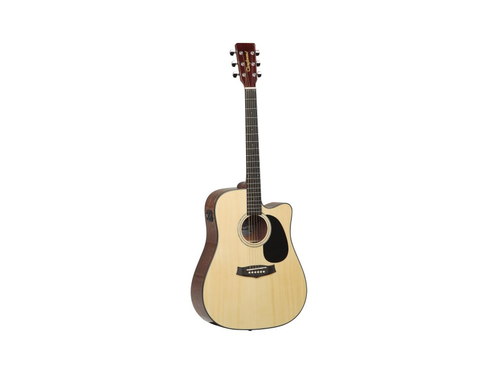 TD8 CE - elektroakustická kytara