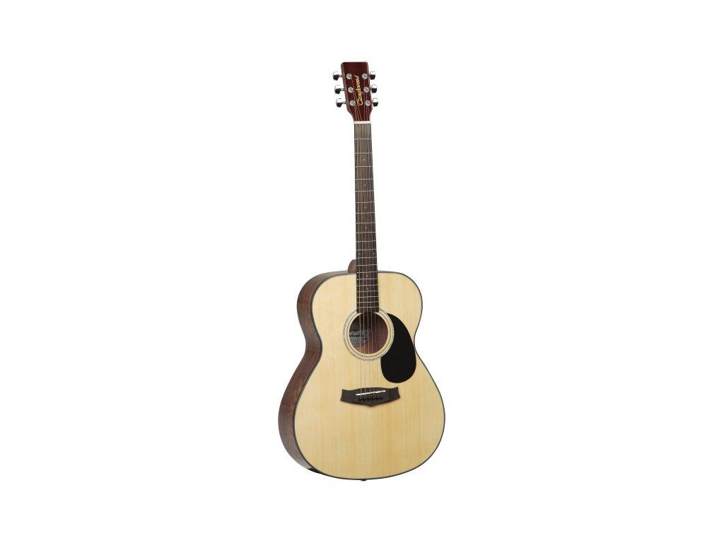 TF8 - akustická kytara