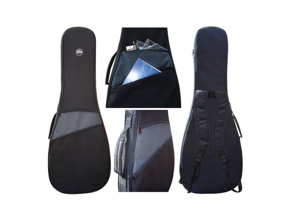 TPG10EA - obal pro el.kytaru
