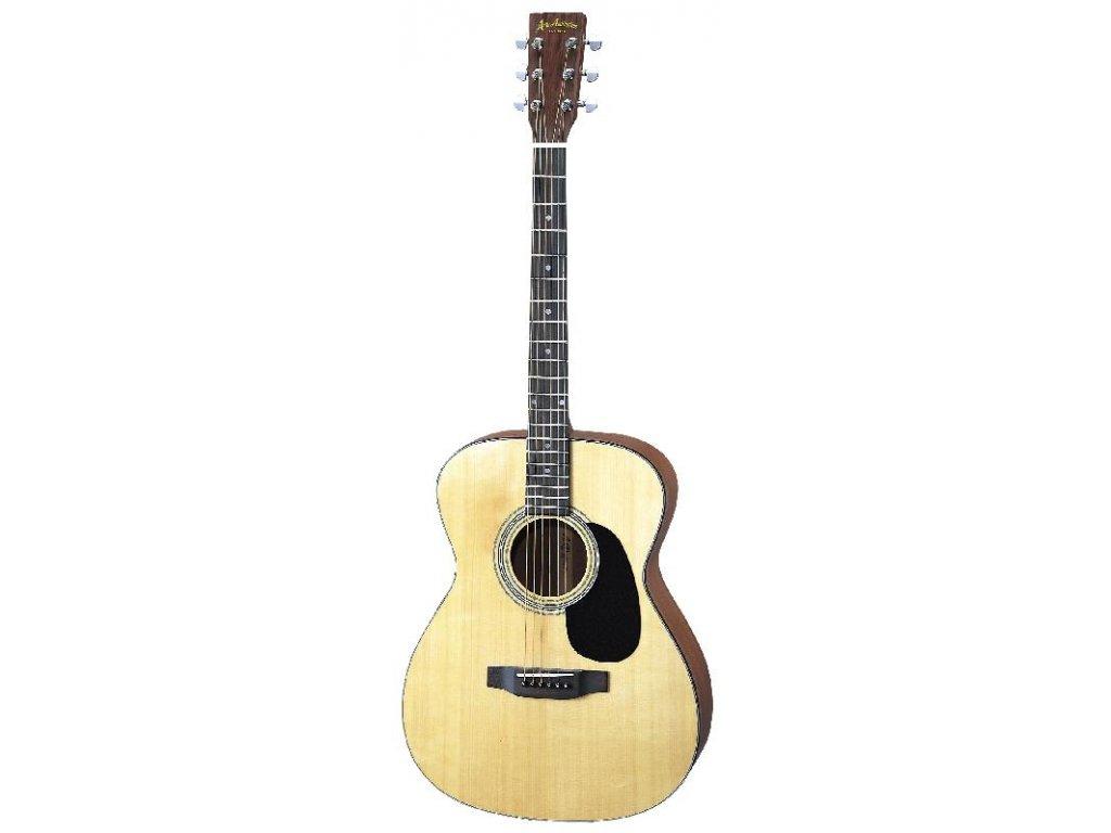 AF-25 - akustická kytara