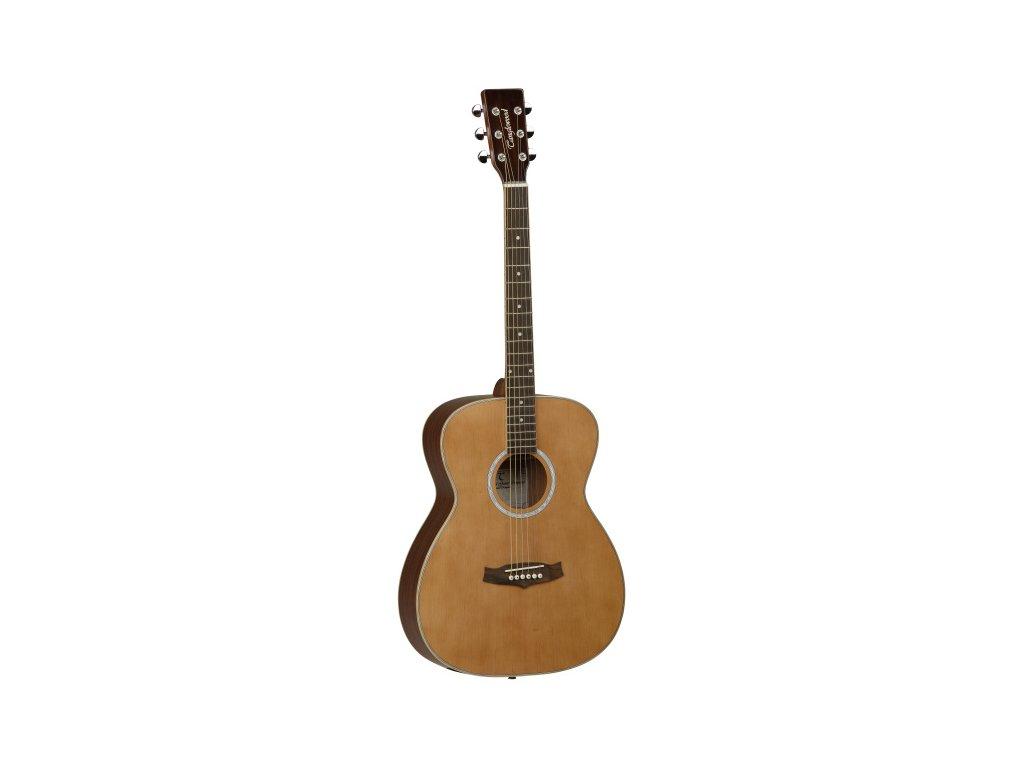 TFA - akustická kytara