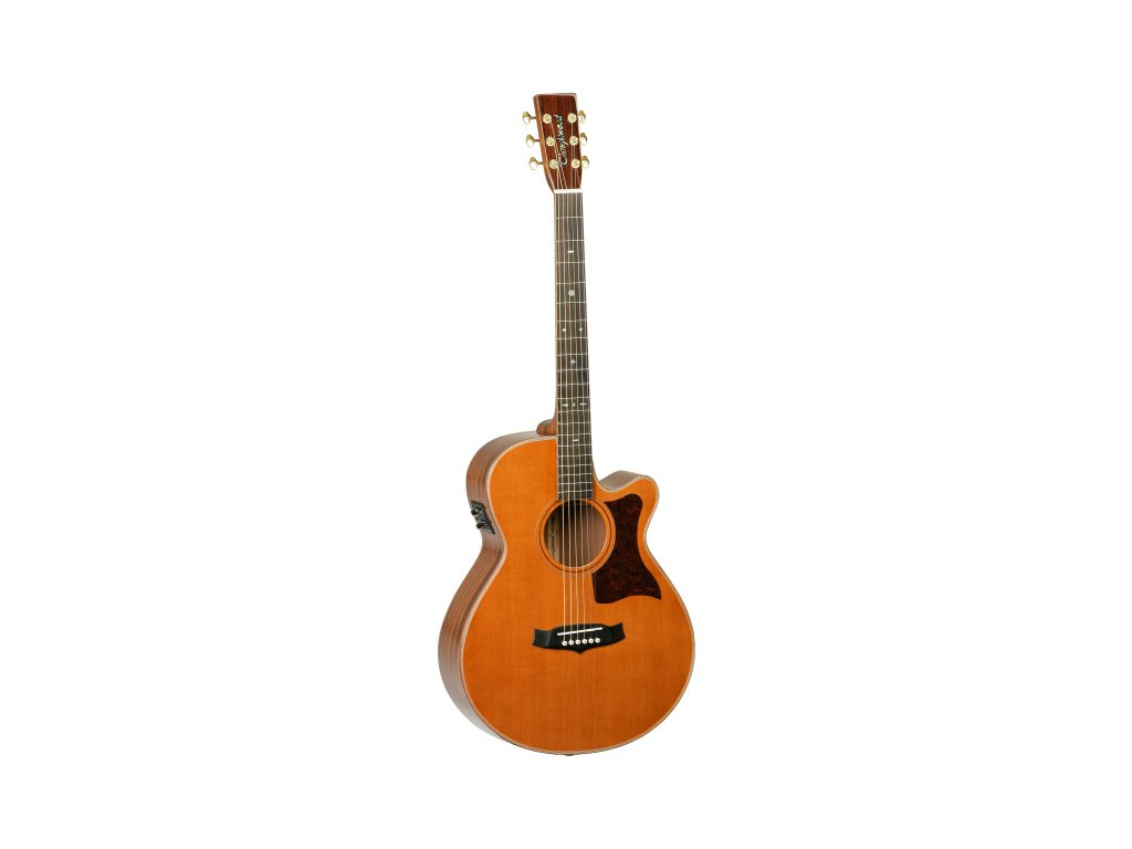 TW 45 H B - elektroakustická kytara