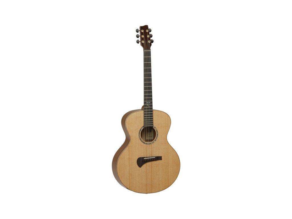 TSM 2 - elektroakustická kytara