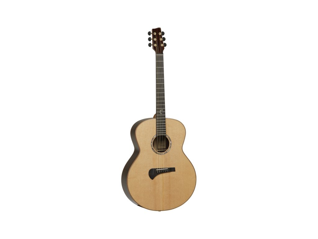 TSR 3 - elektroakustická kytara