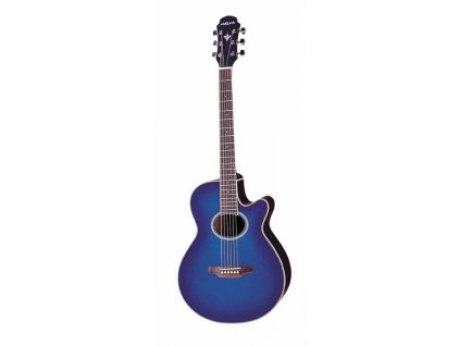 FET-SPT - elektro-akustická kytara