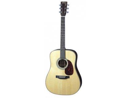 AD-50 - akustická kytara
