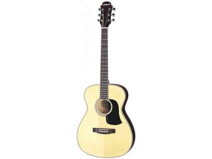 AF-20 - akustická kytara