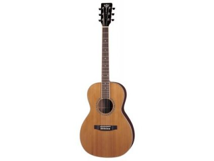 AP-STD - akustická kytara