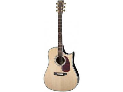 AD-80CE - elektro-akustická kytara