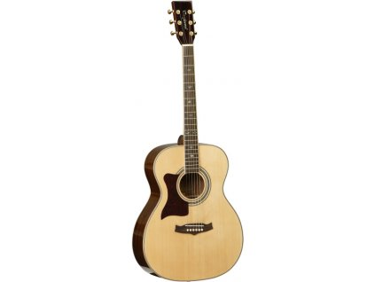 TW 170 AS LH - akustická kytara pro leváky