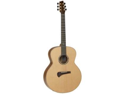 TSM 3 - elektroakustická kytara