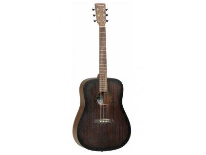 TWCR D akustický kytara